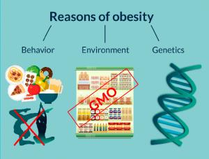 reason-obesity
